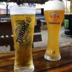 Testa massa olika ölsorter under ölveckan i Göteborg!