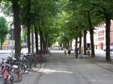 Upplev Göteborg i juli!