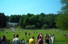 Ta en picknick i Slottsskogen
