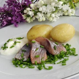 Midsommar-lunch på restaurang och hotell i Göteborg