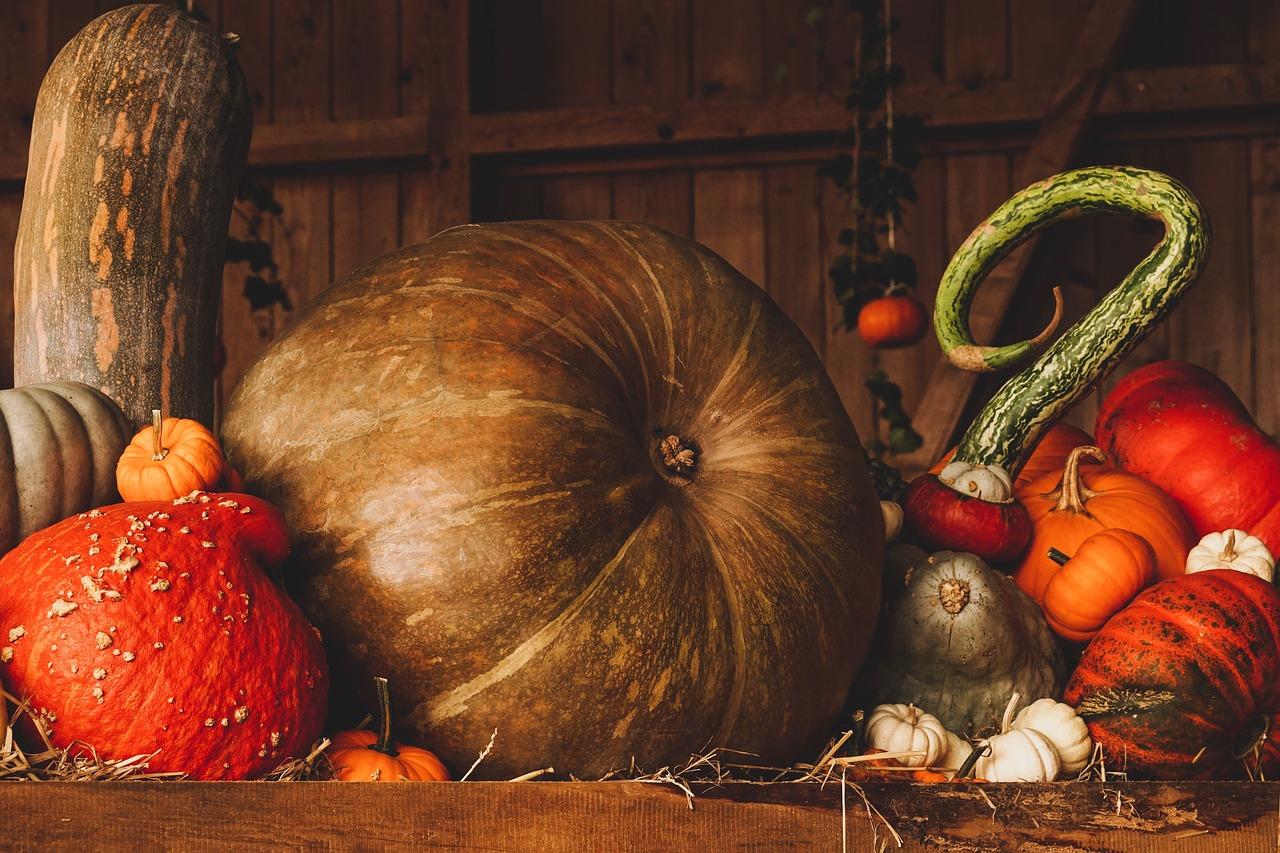 Snart dags fira halloween i Göteborg